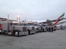 Equine Air Transport