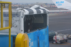 International horse air transport