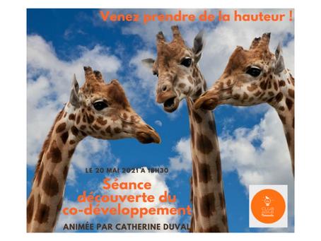 Meetup Club Agile de Normandie - Découverte du co-développement