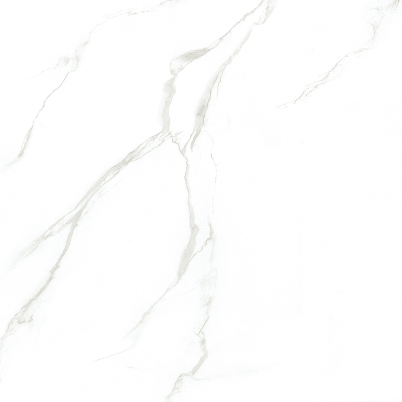 Carrara 260PA