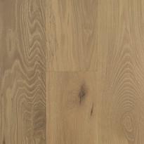 Oak 307 Seashell