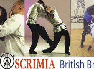 Fiore's Abracar - Fatal strikes Workshop - Bristol - UK