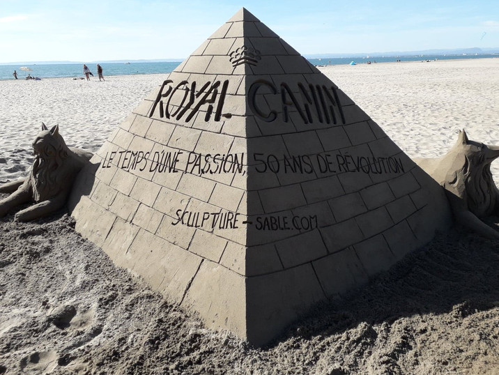 Sculpture-sable-sand-sculpture-lozza-royal canin