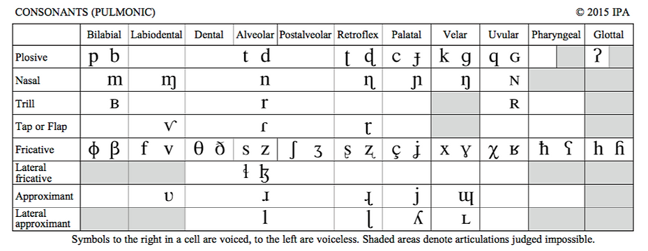 Phonetic symbols of the IPA