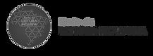 Logo Rede Leitura Inclusiva_edited.png