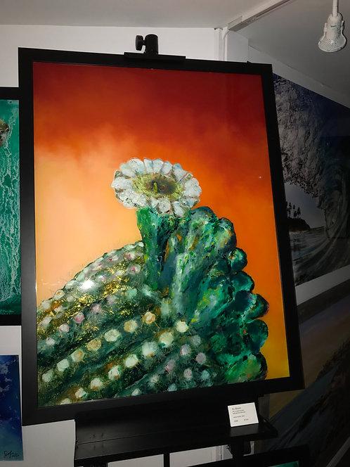 Arizona Bloom