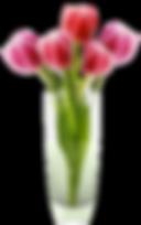 flower-clipart-vase-8-original.png