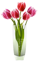 flower-clipart-vase-8-original.png