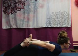 January Pose of the Month: Bow Pose        (Dhanurasana)