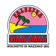 Palestra california logo.png