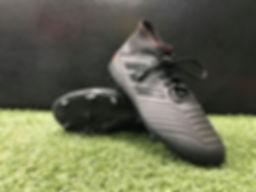 Adidas Predator FG (Black_Red).jpg