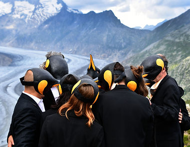 Pinguin Aletsch.jpg