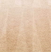 ניקוי שטיח צמר אחרי