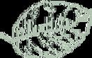 plantlife-header-logo-green_x60.png