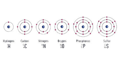 atom 1.jpg