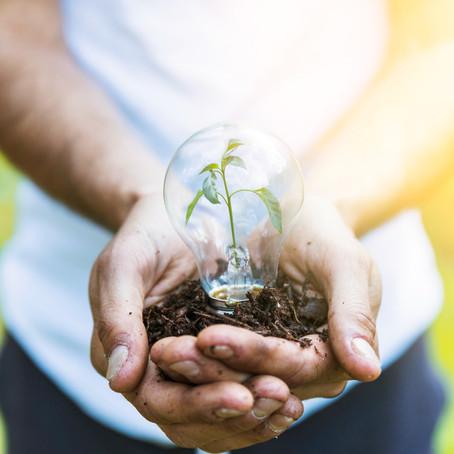 A importância da conscientização da população para a preservação do Meio Ambiente