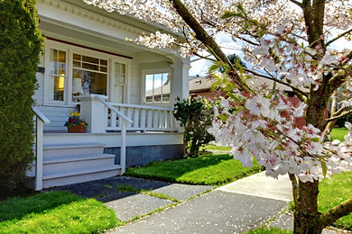 House with cherry tree.jpeg
