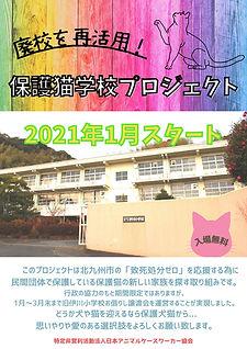 廃校を再活用 保護猫学校 プロジェクト (10).jpg