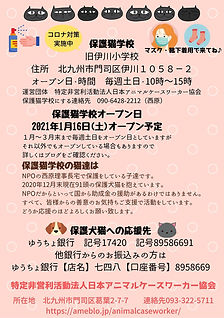 保護猫学校の猫達は NPO法人日本アニマルケースワーカー協会の理事長宅で保護をし