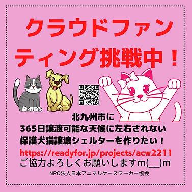 ピンクと黒 ミニマリスト モノトーン 平等 個人 SDG Instagramの投稿のコピー (3).jpg