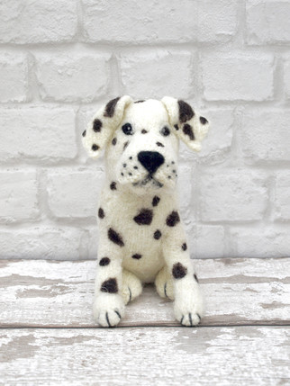 Going Dotty with Domino!