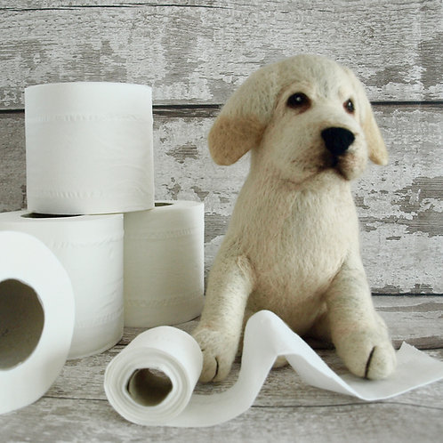 Beau The Labrador Puppy Knitting and Felting Kit