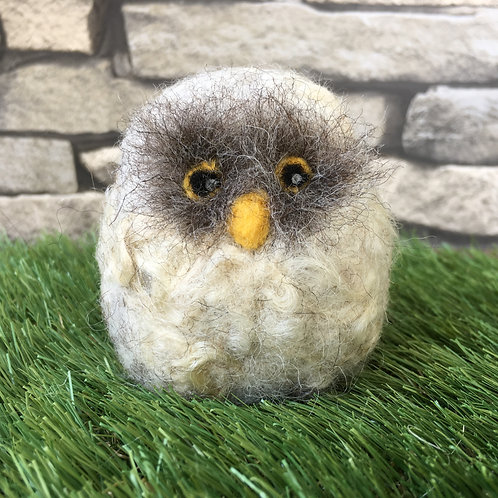 Beginners Needle Felting Kit - Owl