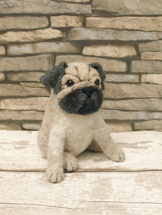 Introducing Pugsley...The Cutest Pug kit Ever!!