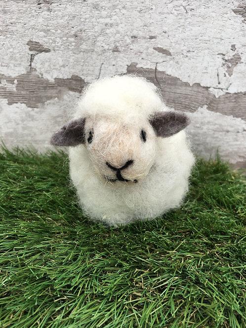 Beginners Needle Felting Kit - Sheep