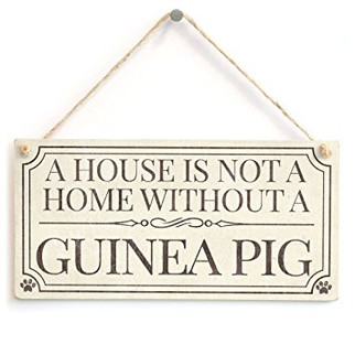 A House is not a Home without a Guinea Pig.