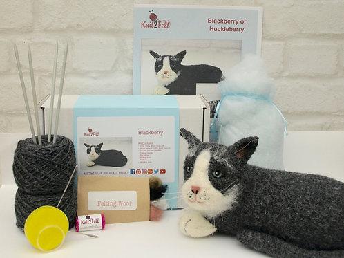 Blackberry the Cat Knitting and Felting kit