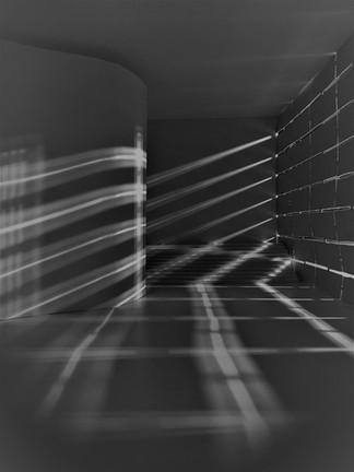 Hanna K - Lichtcompostie