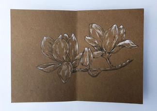 Soyara - Botanisch boekje