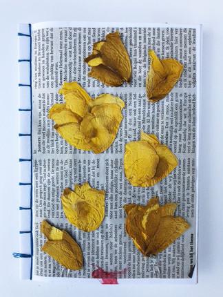 - Botanisch boekje