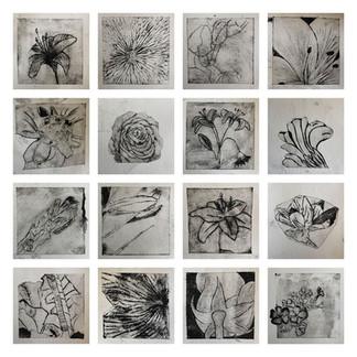Verschillende artiesten - botanische wereld