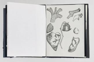 Anouck M - Botanisch boekje