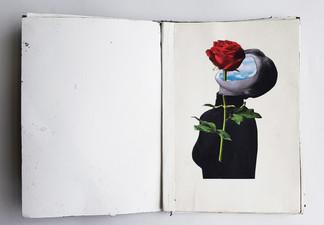 Noor - botanisch boekje