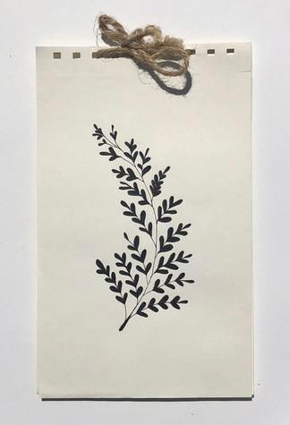 Julie V - Botanisch boekje