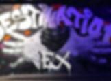 Destintion Ex logo.jpeg