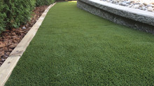 Real Lawn Versus Synthetic Turf
