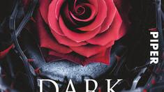 Rezension: Dark Heroine von Abigail Gibbs