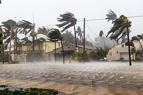 flooded-streets-and-palm-trees-being-blo