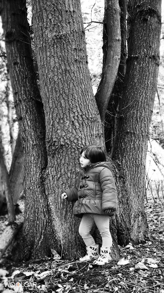 robin woolgar photography