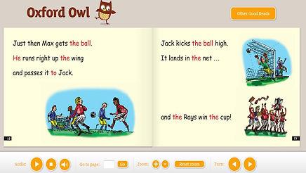 ox owl.jpg