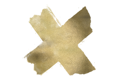 THE X PNG.png