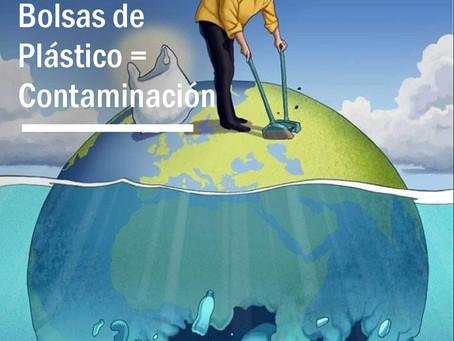 BOTELLAS Y BOLSAS DE PLASTICO: CONTAMINACION DE LAS PLAYAS Y DEL MAR.