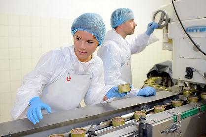 Food processing line.jpeg