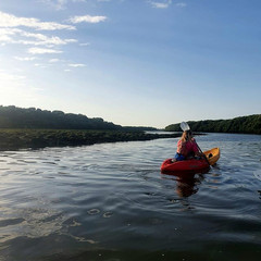 Kayaking in the Al Zorah Nature Reserve