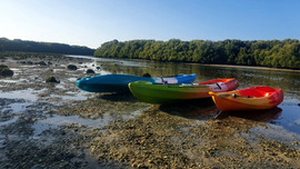 Low Tide Kayaking
