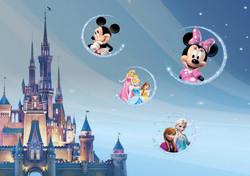 Disney autostoelen